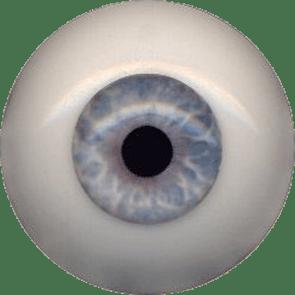 EyeCo_0006s_0008_A006