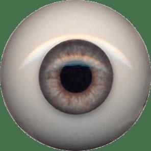 EyeCo_0006s_0011_205