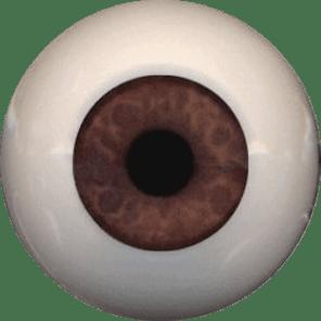EyeCo_0008s_0016_a033